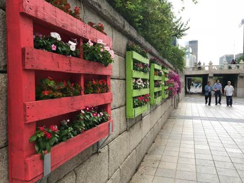 Stone walls with colourful vertical flower beds.