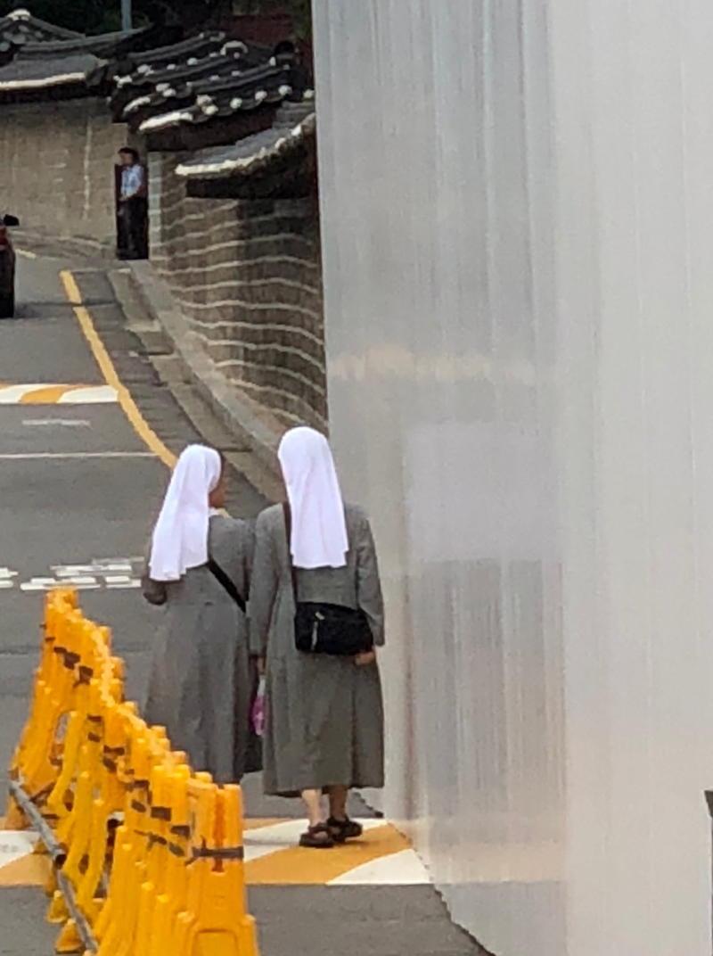 Two elegant nuns walking in Seoul