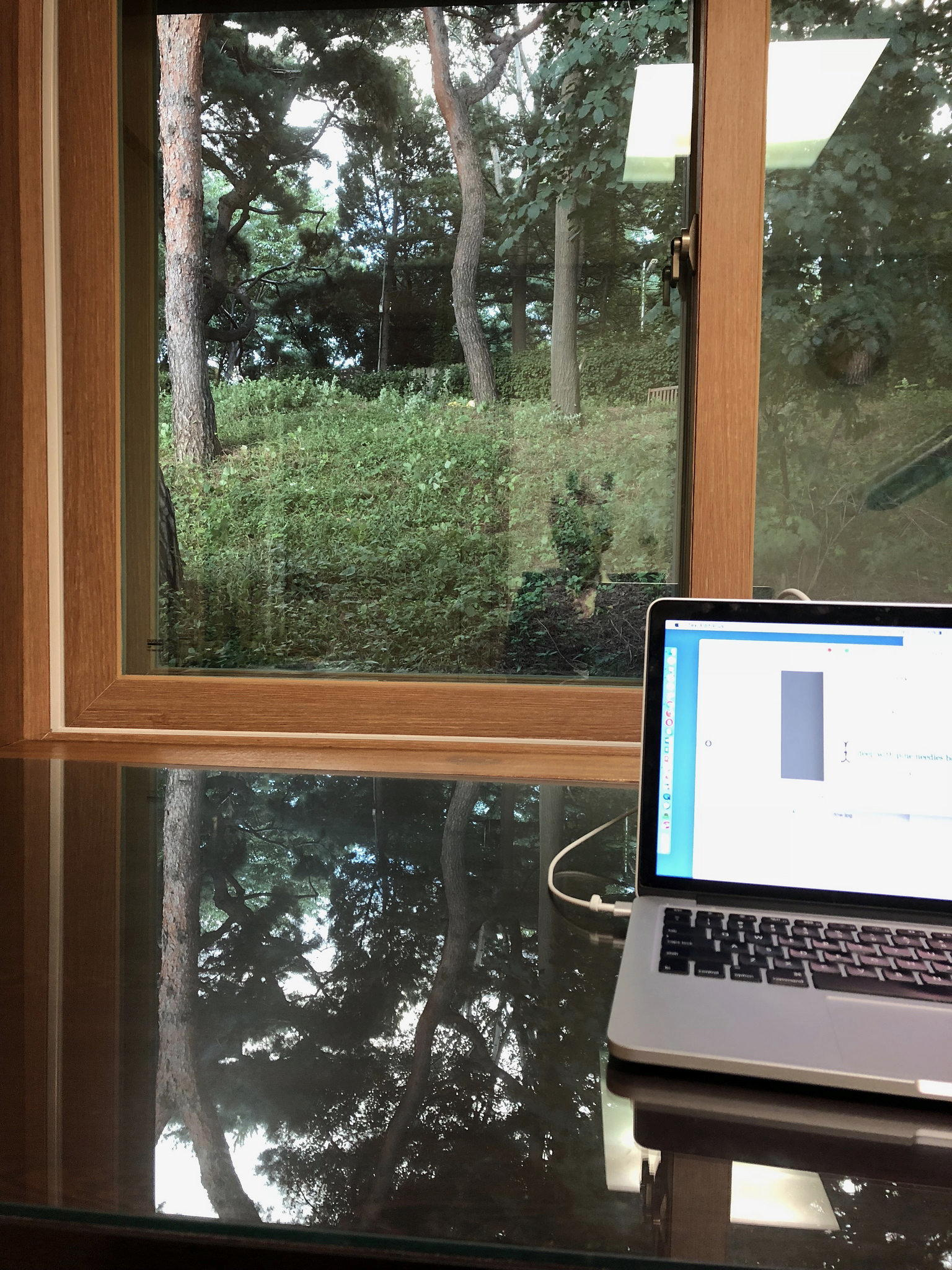 View of woods through a window in Seoul, reflected in a desk