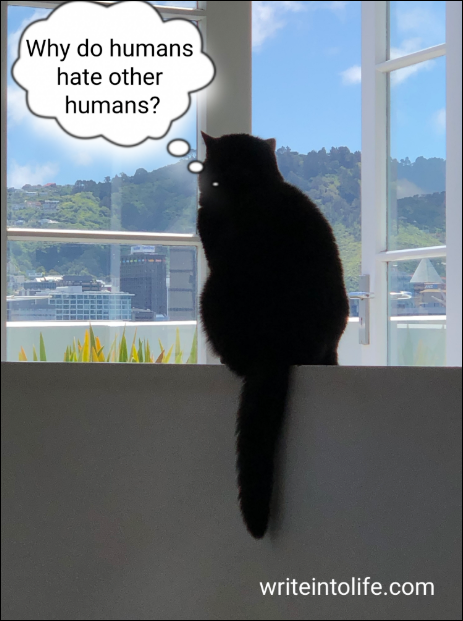 """Photo of a cat with thought bubble saying: """"Why do humans hate other humans?"""""""