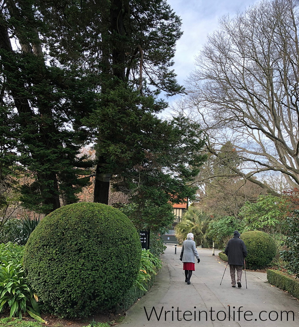 Photo of an older couple walking in the grounds of Maida Vale, Christchurch