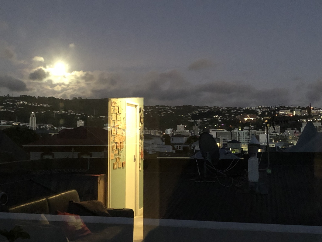 photo of Wellington city in evening with reflection through a doorway superimposed.