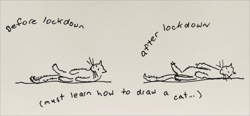 two cats lying on their backs, one before lockdown, one after lockdown. Words: Must learn how to draw a cat.