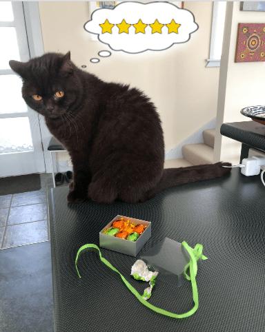 Photo of cat awarding 5 stars to box of van Heiningen Easter Eggs