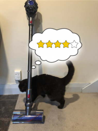 Photo of cat inspecting a Dyson V8 Origin stick vacuum cleaner