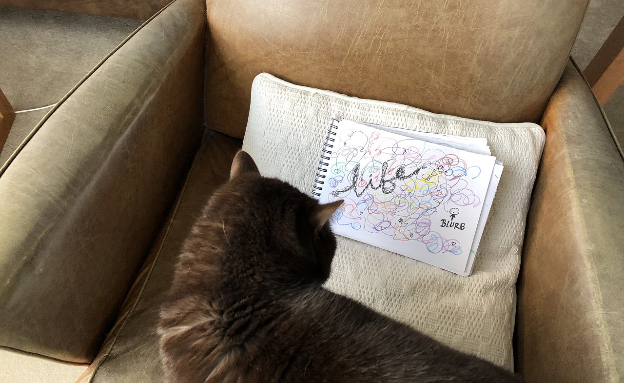 photo of cat inspecting a drawing of life as a big scribble, blurb as a tiny dot.