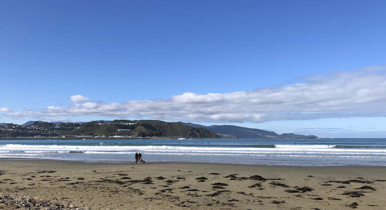 Lyall Bay, Wellington in winter