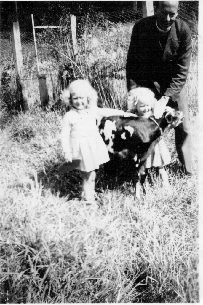 Man in clerical collar and suit holds a calf that two little girls are patting. Black and white photo.