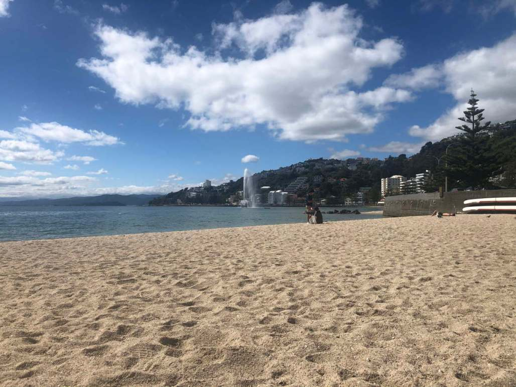 Almost deserted sandy beach in Wellington City, blue sky with clouds, sea.