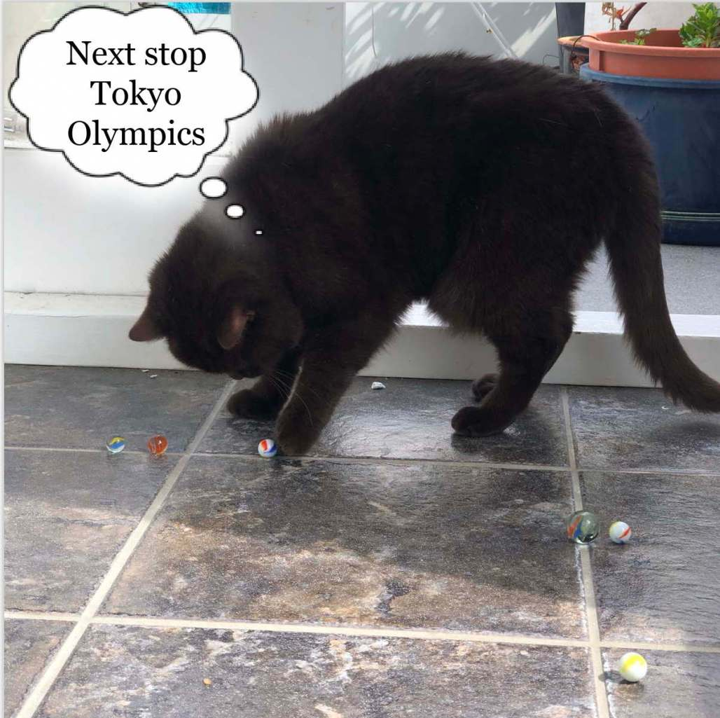 Brown cat playing with marbles. Thought bubble says: Next stop Tokyo Olympics