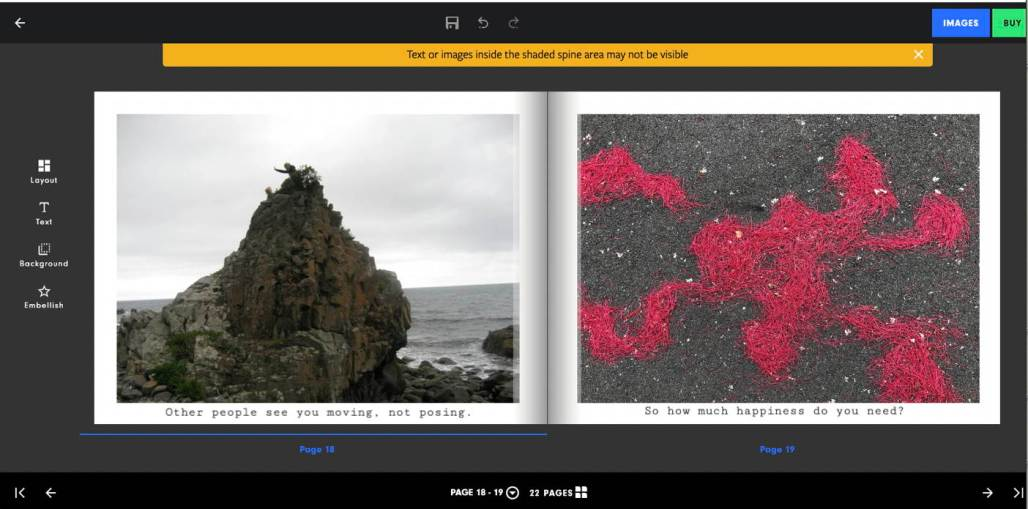 """Screenshot of an open photo-book as it appears to the person making the book using the Diamond Photo website. Page left image: a person on a big steep rock by the sea. Page right: photo of pohutukawa stamens clumped on a footpath. Icons surround the pages. Yellow note says """"Text or images inside the shaded spine area may not be visible."""""""