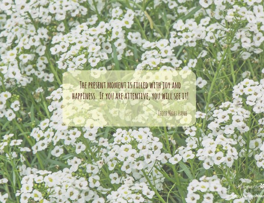 mindfulness, quote, flowers