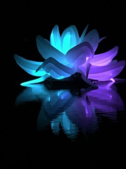 Nightfest Lotus Flower 3