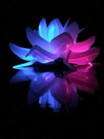 Nightfest Lotus Flower 7