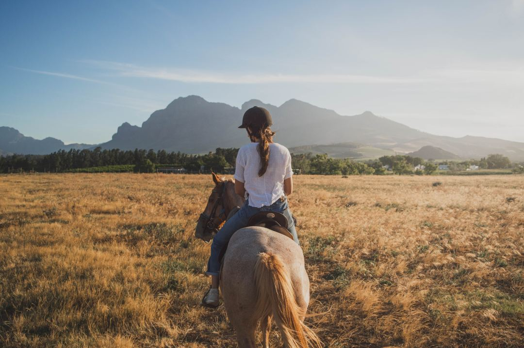 Lady riding in the countryside on horseback