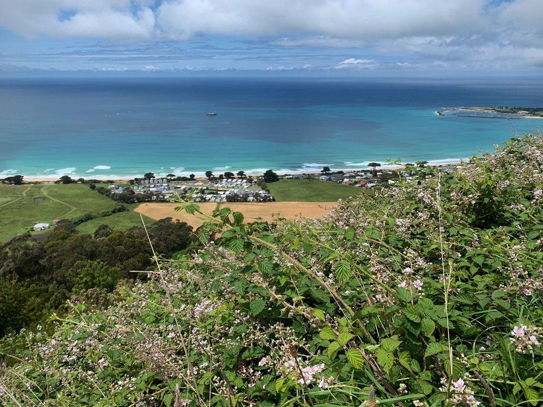 Apollo Bay View