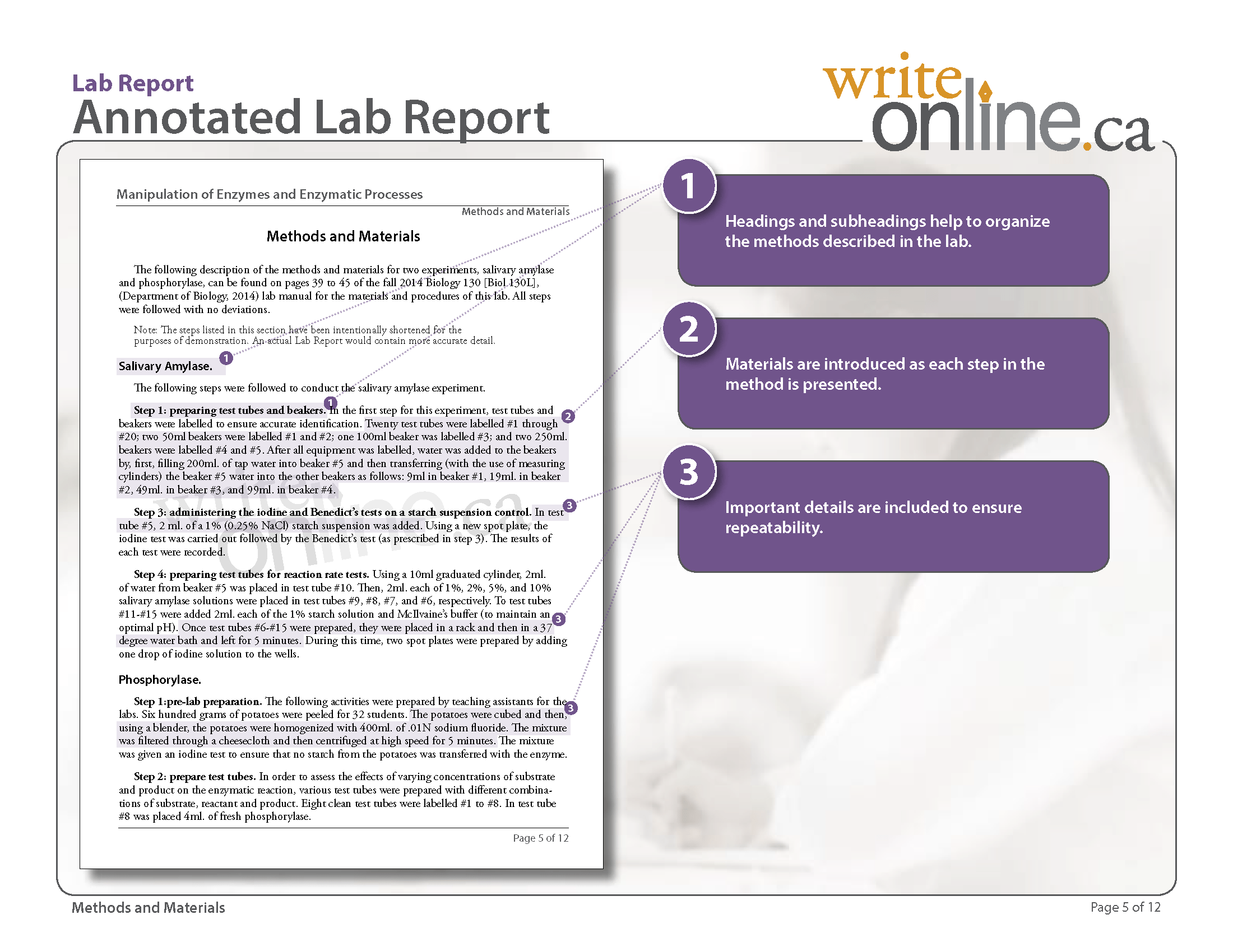 Write Online Lab Report Writing Guide
