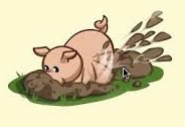 Pig hunting for truffles_Fotor