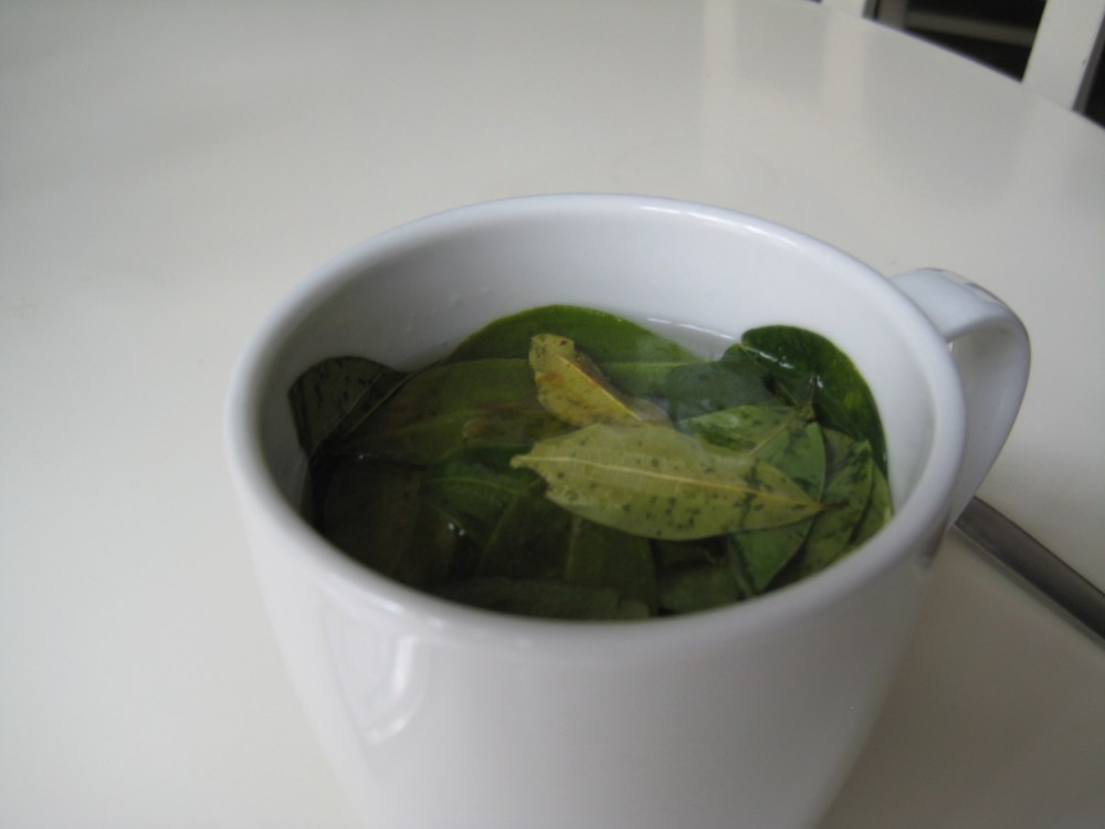 Peru Travel Blog: A taste of...Coca Tea‏