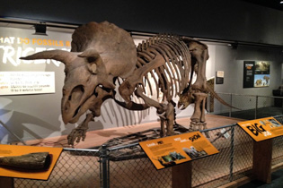 7 Valuable Lessons Learned from Visiting Museums