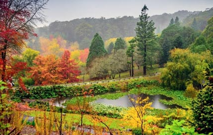 7 Best Places to Enjoy Autumn in Australia