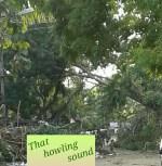That howling sound – When Vardah struck Chennai