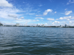 what's that in the water… kranji way