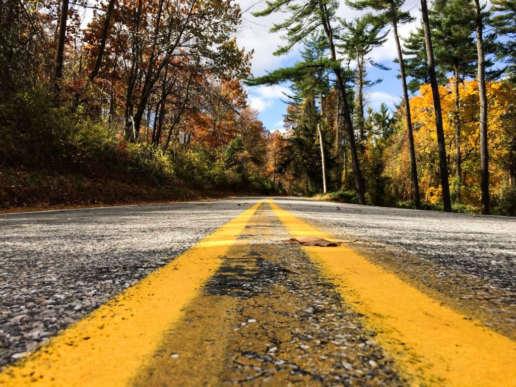 road image yellow lines and autumn leaves