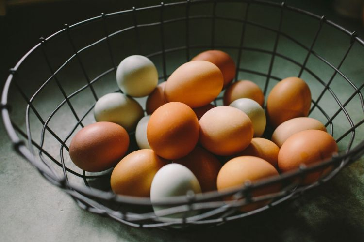 A Wire Basket of Eggs