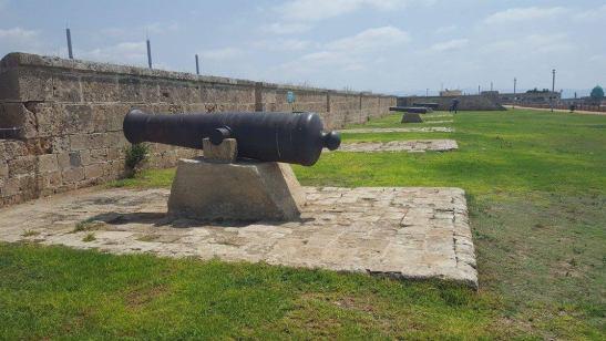 cannon-akko
