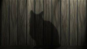 cat-shadow