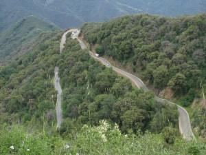 Leaving Sequoia Nat'l Park