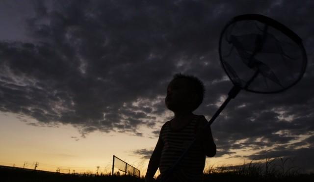 夕暮れ時、虫取り網を持つ少年