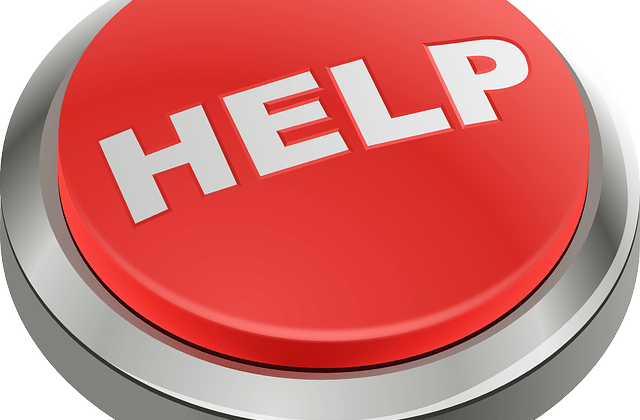 """""""HELP!"""" Emergency Grants for Writers, Artists, and Other Creative Folks By Robyn McGee"""