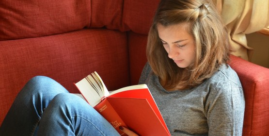 Write a Best-selling Young Adult Novel! Here's How! by Jasmine Rideau