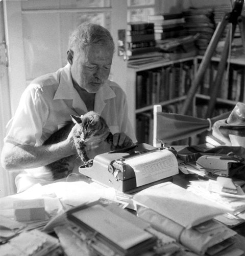 The Relationship Between Famous Writers & Their Cats
