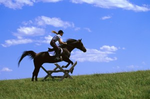 Equestrian and Horse Jumping