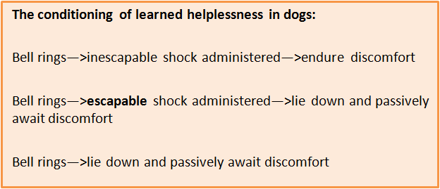 Conditioning of Learned Helplessness in Dogs 1