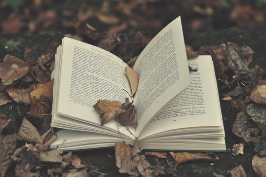 The Legal Side of Writing for Anthologies