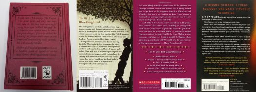 The Perfect Back Cover Blurb