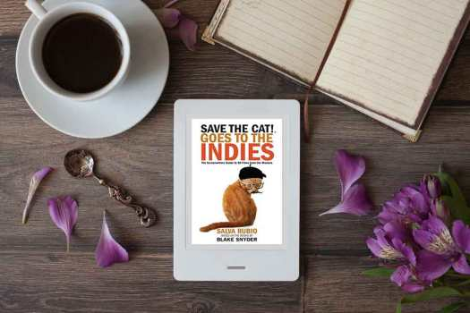 Save the Cat Revisited — a Q&A with Salva Rubio