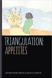 Triangulation book cover image