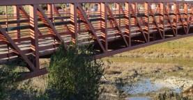 Bridge C