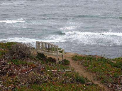 Lone Bench on Sea Cliff, Moss Beach