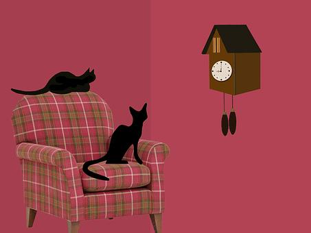 cats anticipation, suspense