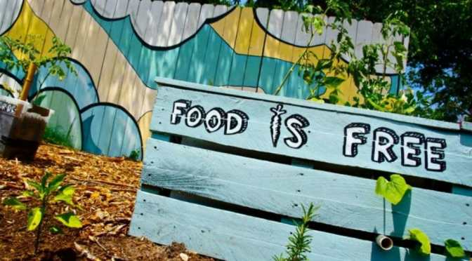 Food is Free: A Practical Lesson in Community Gardens