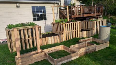 wooden-pallet-raised-garden-beds