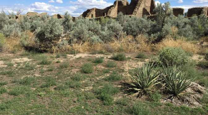 Navajo Nation to Aztec Ruins, New Mexico