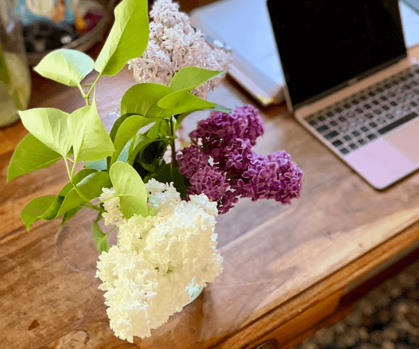 Find encouragement and confidence to write by listening to the lilacs