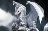 white_dragon_hatchling_by_dashase (detail)